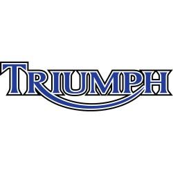 Piese SH - Triumph